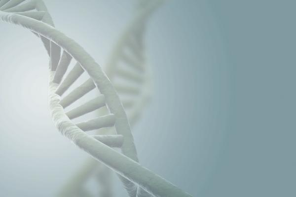 Functional & Nutritional DNA Testing