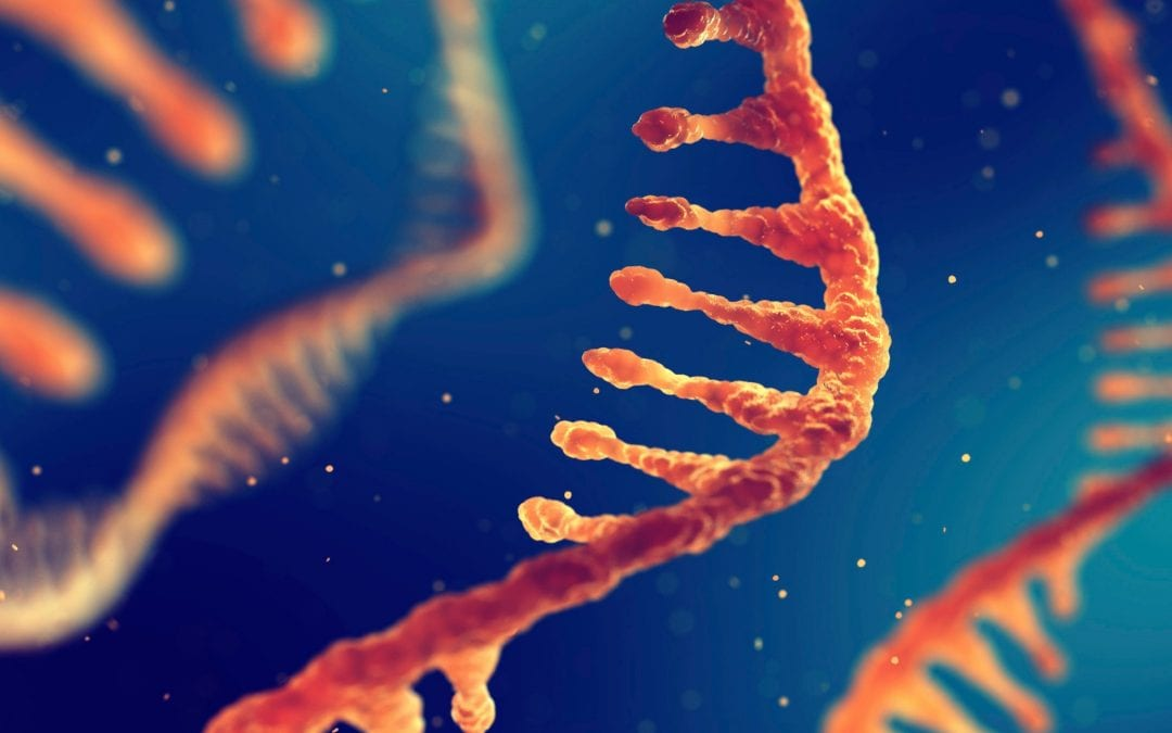 DNA, mRNA, CRISPR, and Your Life